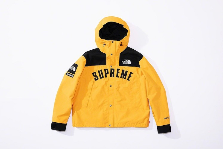 Supreme x The North Face SS19 19