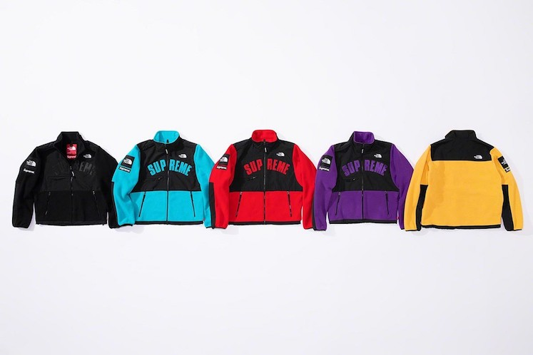 Supreme x The North Face SS19 7