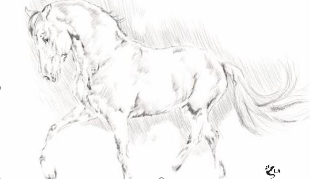 16 – 17 octobre 2021 *Découvrir l'ennéagramme avec les chevaux
