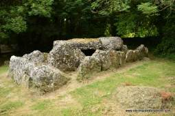 Graat Ireland tours of a Wedge tomb