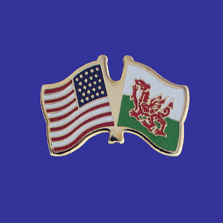 USA+Wales Friendship Pin-0