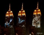 they projected images of wildlife on the ESB