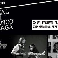 Festival Flamenco de Coín en las Cuevas Rupestres