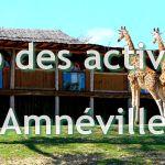 Zoo, ski, thermalisme, concerts, animations, casino... découvrez le top des activités d'Amnéville