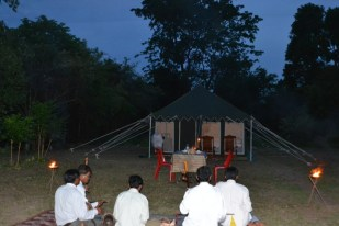 Traditional music and tent safari