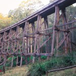 Trestle Bridge - Noojee Trestle Bridge