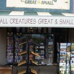all creatures great and small logo - All Creatures Great and Small