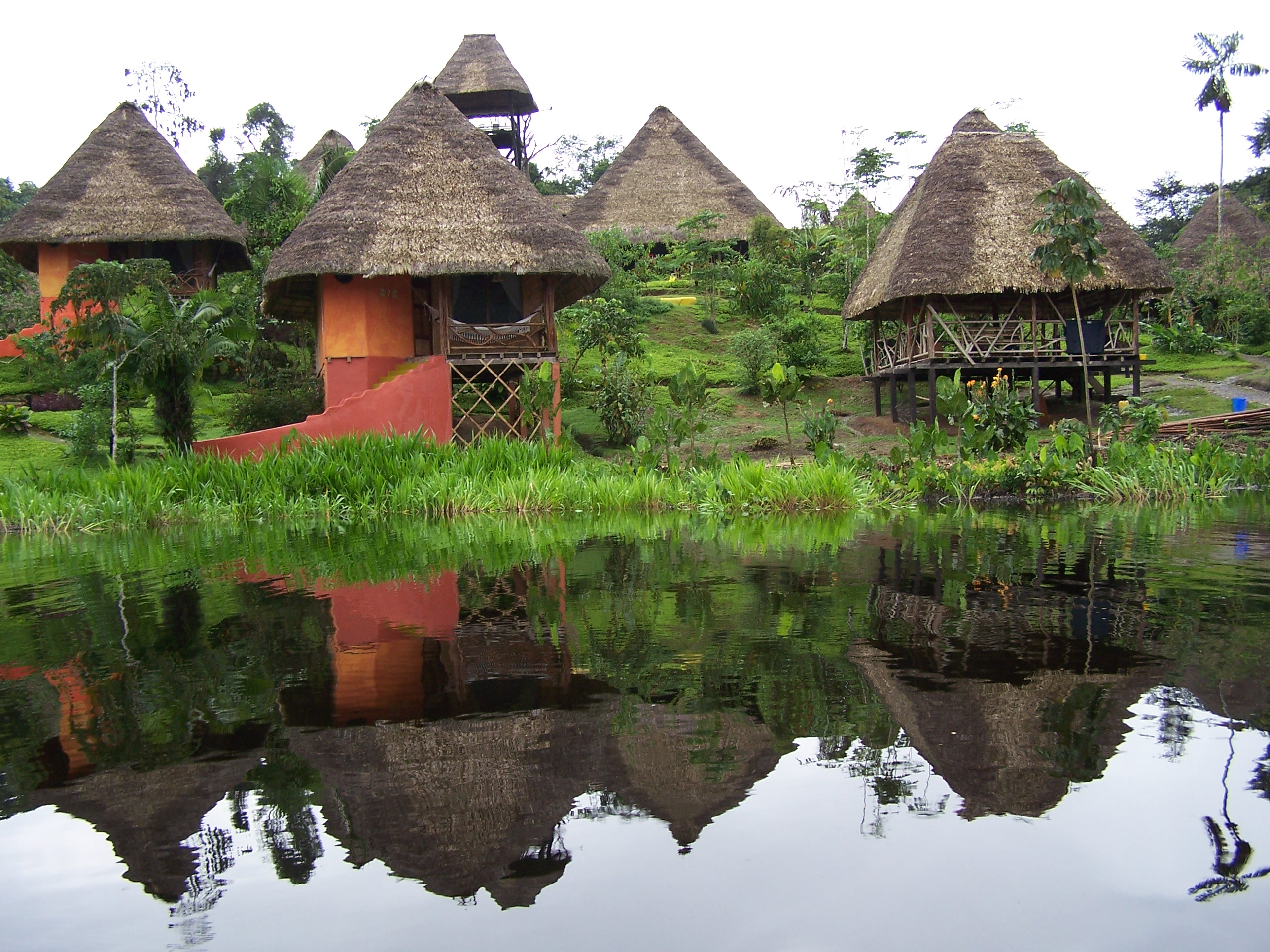 spectacular-experience-in-the-amazon-jungle-in-ecuador