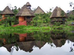 spectacular-experience-in-the-amazon-jungle-in-ecuador