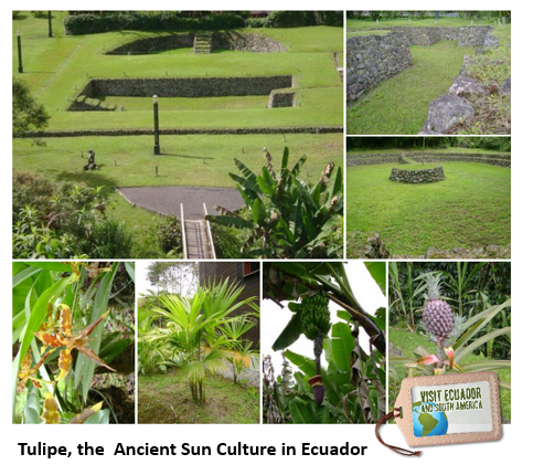 Time to discover Tulipe: Ancient Sun Culture of Ecuador