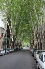 A street in charming Palermo Soho neighborhood in Buenos Aires.
