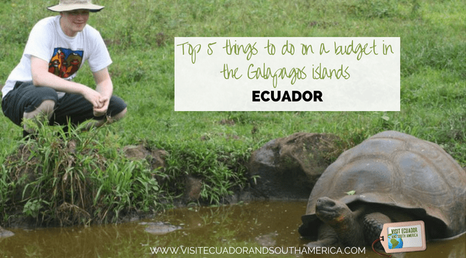 Top 5 things to do on a budget in the Galapagos islands, Ecuador