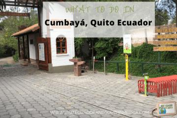what-to-do-in-cumbaya-quito-ecuador