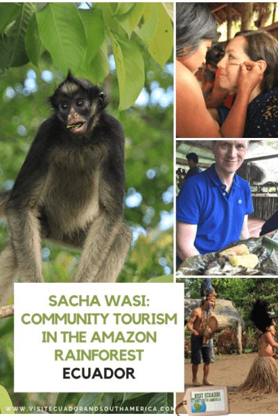 sacha wasi