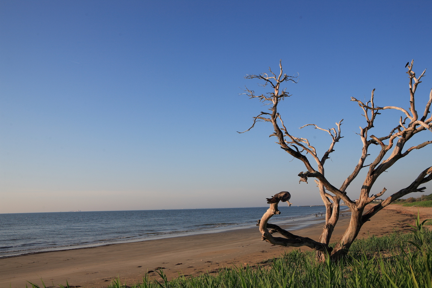 Image result for grandview nature preserve
