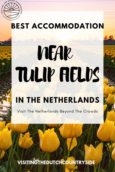 Best accommodation near tulip fields in The Netherlands| Budget accommodation near tulip fields in The Netherlands | Top accommodation in Noord Holland | #tulipfields #thenetherlands #accommodation