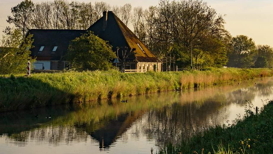 Where to stay near tulip fields in Noord Holland The Netherlands   Budget accommodation near tulip fields in The Netherlands   Top accommodation in Noord Holland  Tulip fields to see visit in Noord-Holland, Netherlands