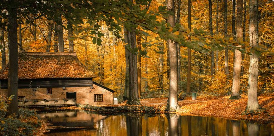 Arnhem, Gelderland, The Netherlands during autumn: Many things to do