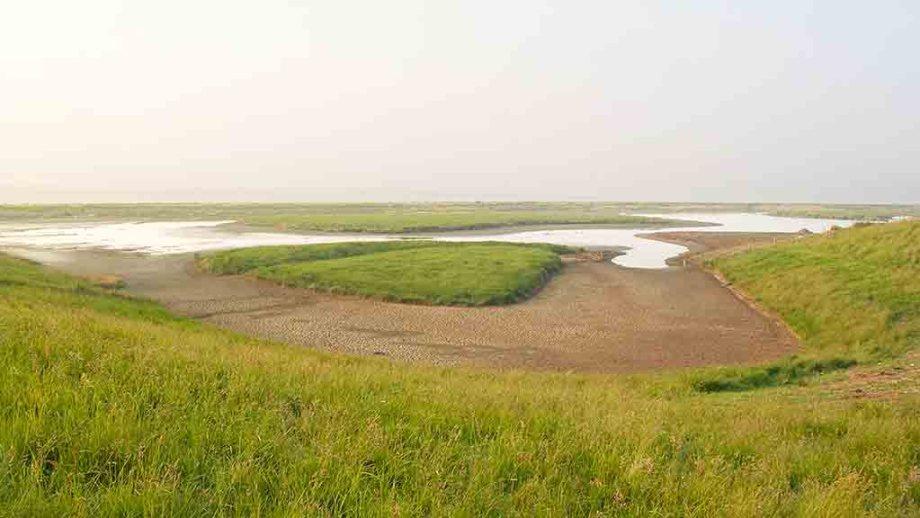 Vatrop: a nature reserve near the Dutch town of Den Oever on the Dutch island of Wieringen, The Netherlands