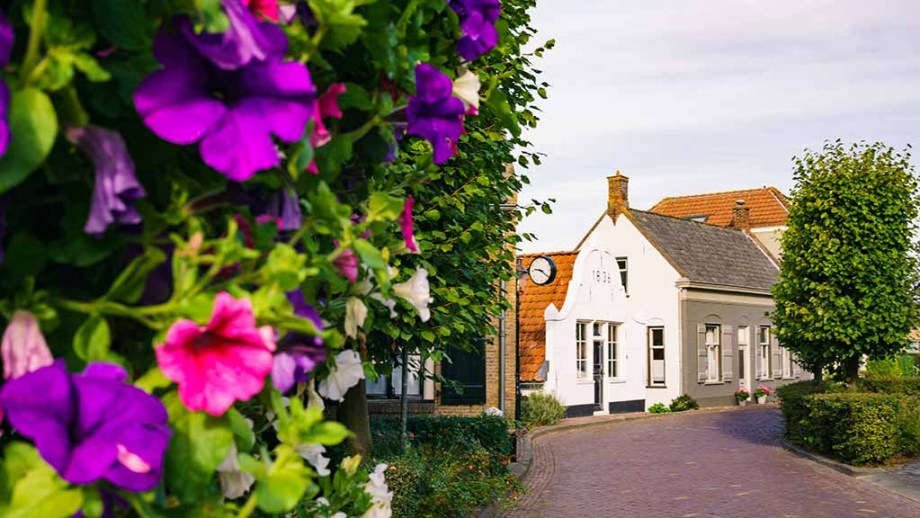 The dreamy Dutch village of Drimmelen in the province of Noord (North)- Brabant, The Netherlands, with flowers
