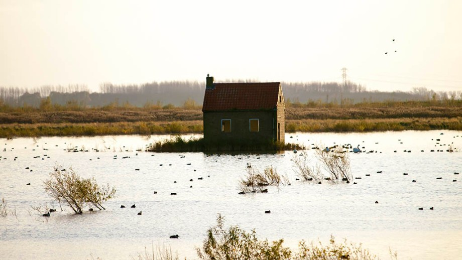 a shed surrounded by water in the landscape on the Dutch nature island of Tiengemeten Holland