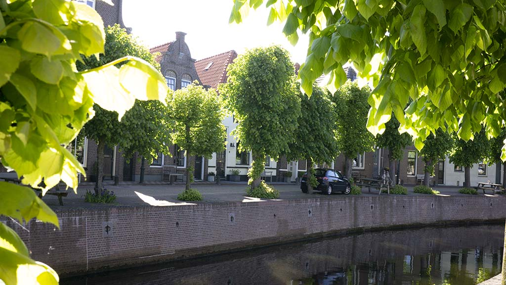 a view on blooming trees alongside a canal and canal houses in the Dutch town of Hasselt, Overijssel, The Netherlands