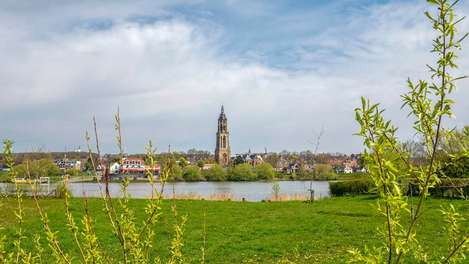 view on the river and the town of Rhenen seen through bushes in The Netherlands