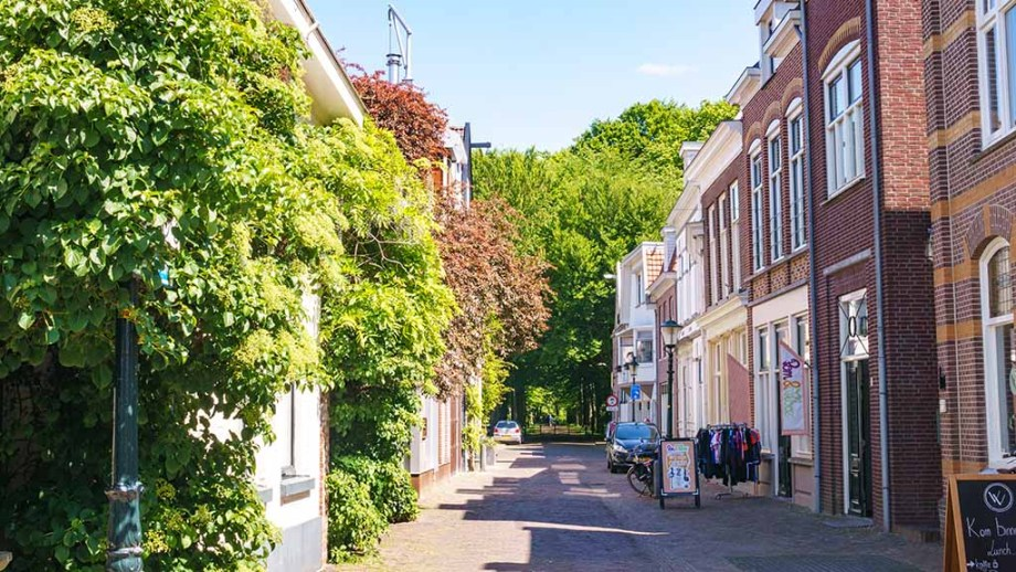 view on a street in the city of almelo, overijssel, the netherlands on a summer day