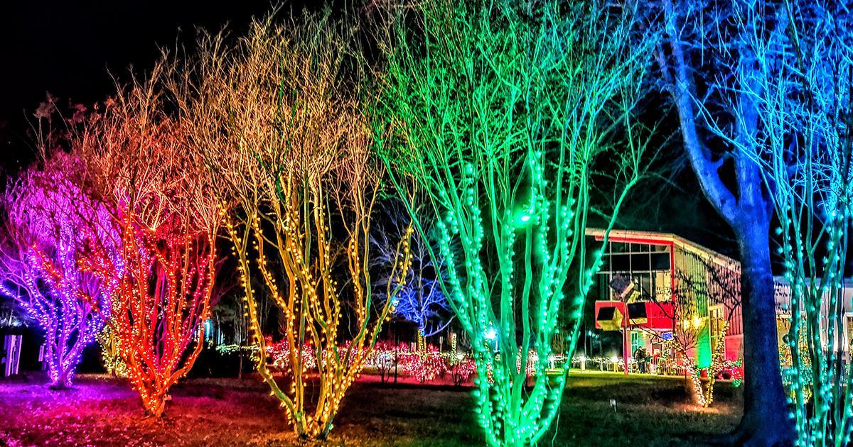 holiday light displays visitmaryland org