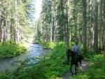 Kalama Horse Camp