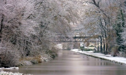 7 festive walks in the Northwich area