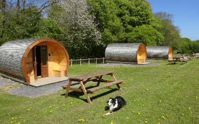 Shropshire dog friendly accommodation