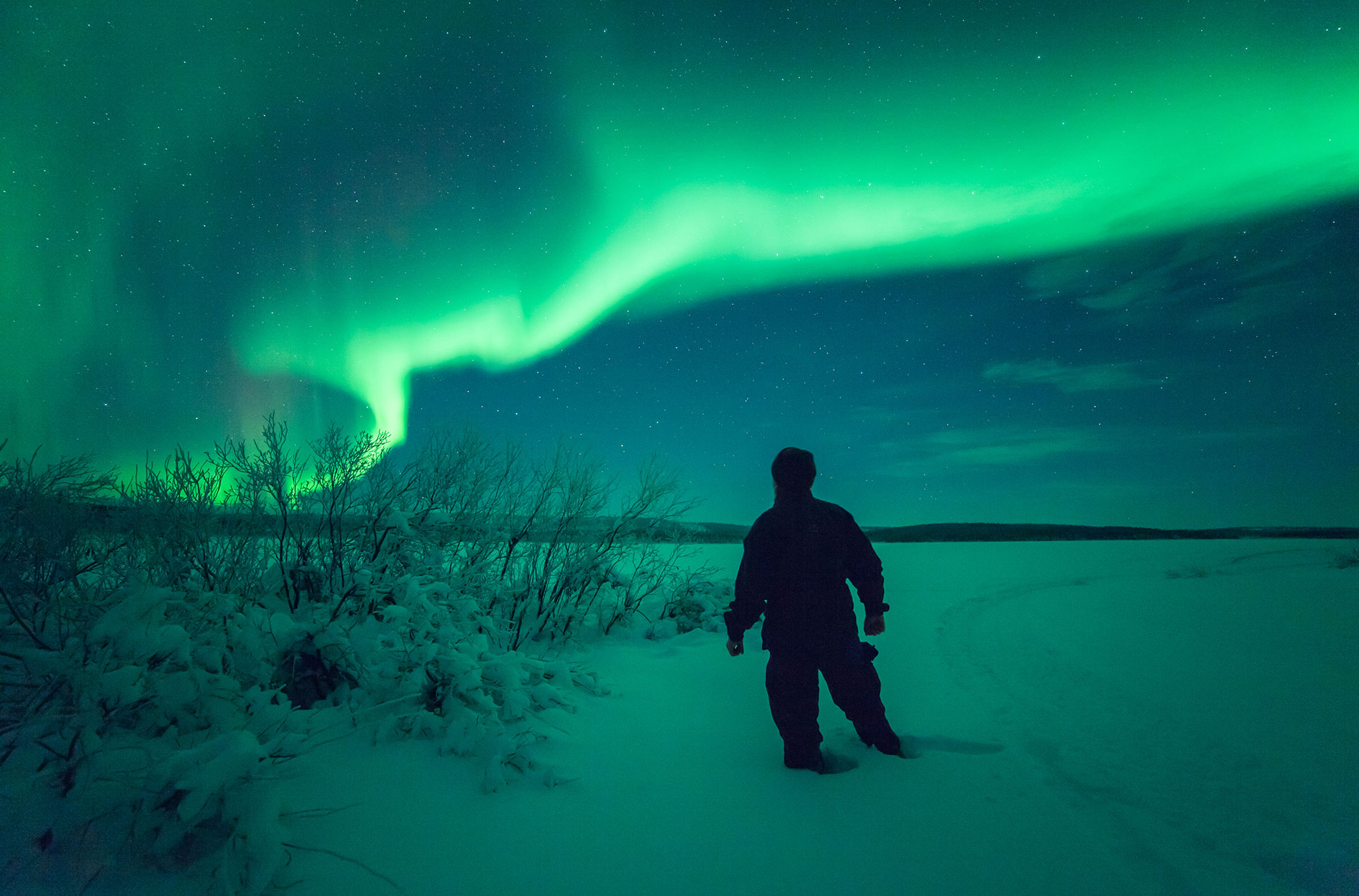 Northern Light Predictions