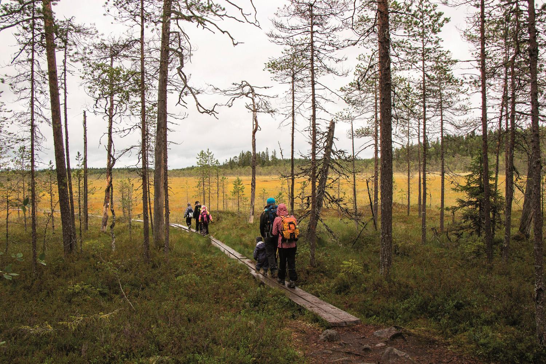 Pieniä retkeläisiä pitkospuupolulla, Pyhä-Häkki. Kuva Elina Lamminaho retkeilyK P