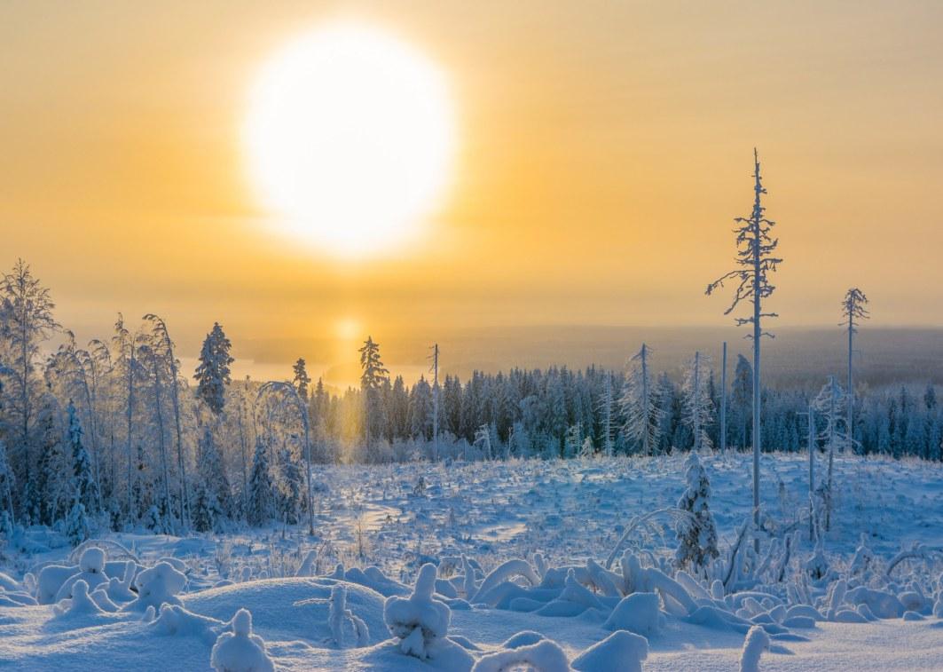 Tammikuu 2020 Kusiaismäki Saarijärvi