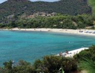 3_Lepre_spiaggiaRGB