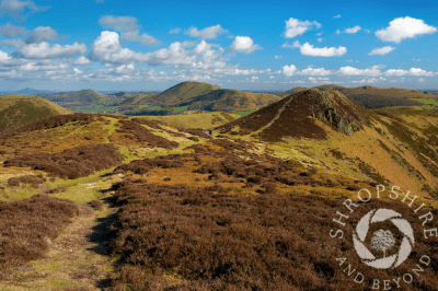 The Long Mynd by Shropshire and Beyond