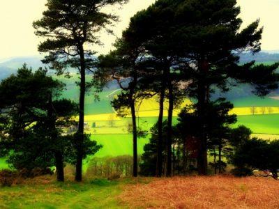 Jane Lodge Croft Ambury