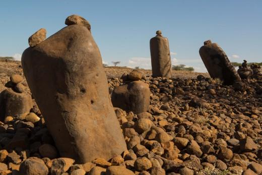 Fiebig Turkana-8149