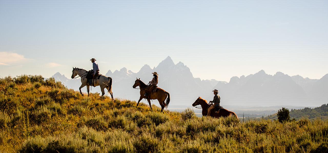 The Great American West: aggiornamento COVID19