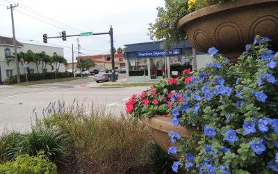 East Venice Avenue: Exploring the Area Less Traveled