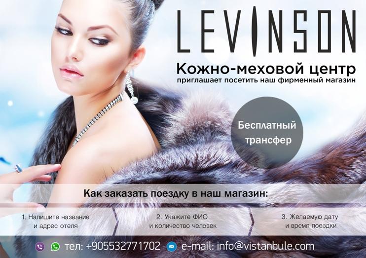 levinson официальный сайт