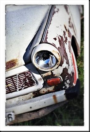 rottencars800-020