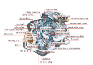 TRANSPORT & MACHINERY :: ROAD TRANSPORT :: TYPES OF