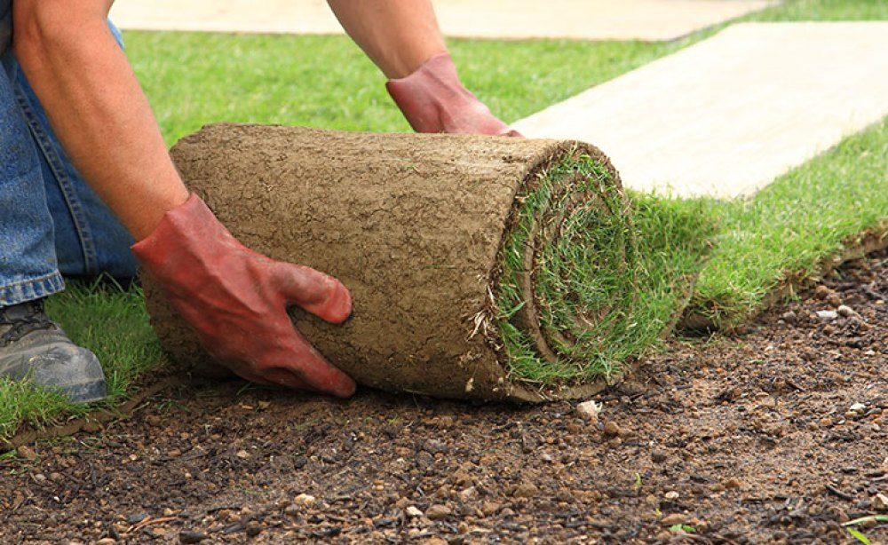 Instant Roll Out Lawn | Landscaping Adelaide