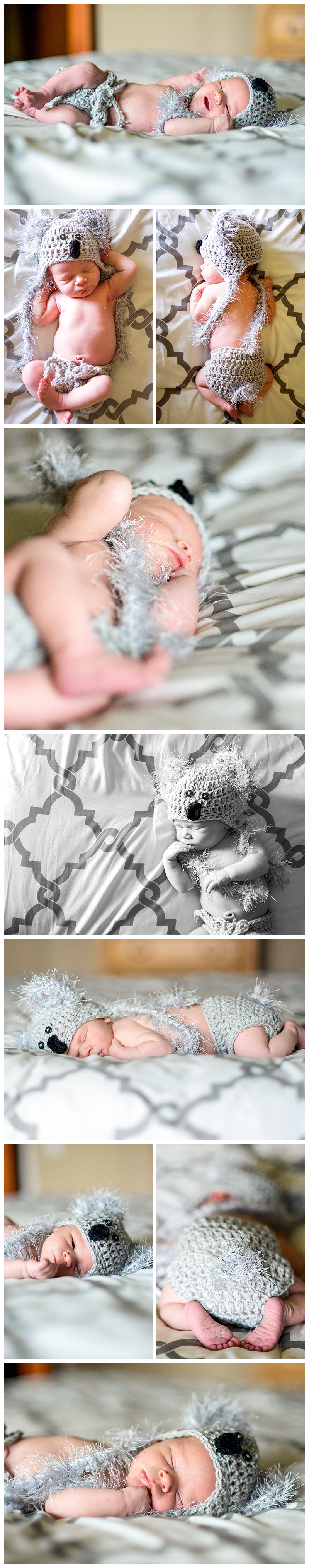 Colorado Newborn Photography