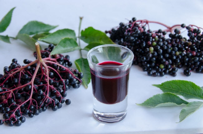4 Elderberry Syrup Uses And Benefits Vitacost Blog