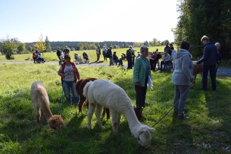 Aktivtag-September-2019-in-Muldenberg