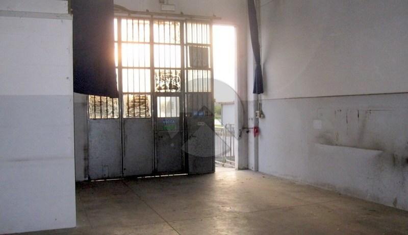 7057-affitto-cesena-torredelmoro-capannone_-003