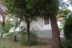 2515-vendita-cesena-monte-villa_-007